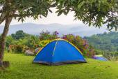 Camping tent in campground at national park. — Stock Photo