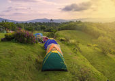 Camping tent in campground at national park — Stock Photo