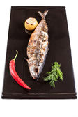 Grilled mackerel on a black plate — Stock Photo