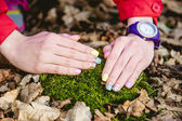 Manicure on a background of moss — Stock Photo