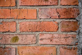 Brick background, texture solution — Stock Photo