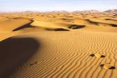Traces In The Sands Of Morocco — Stock Photo