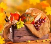 Autumn concept — Stock Photo