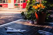 Table setting outside  — Stock Photo
