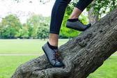 Voeten van een jonge vrouw boom klimmen — Stockfoto