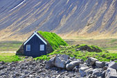 Traditional icelandic cabin — Stock fotografie