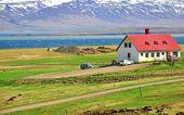 Maison en islande — Photo