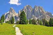 Road in Dolomites, Italy — Stock Photo