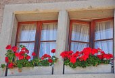Chalet windows — Stockfoto