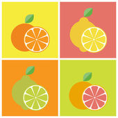 Citrus fruits icons — Stock Vector
