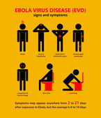Ebola symptoms infographic — Stock Vector