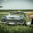 Fragment of old vintage retro classic cars standing in field on sunny day — Stock Photo #52926685
