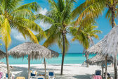 Fragment of gorgeous palm trees white sand beach with people in background — Zdjęcie stockowe