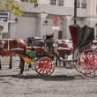 Fragment of view of beautiful  vintage retro horse drawn carriage on  city background — Stock Photo #67545125