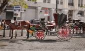 Fragment of view of beautiful  vintage retro horse drawn carriage on  city background — Stock Photo