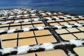 Sea salt production — Stock Photo