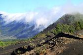 National Park Caldera de Taburiente in La Palma — Stock Photo