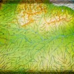 Amazonia — Foto de Stock   #68519975
