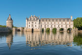 Chenonceau castle, Loire Valley,France — Stock Photo