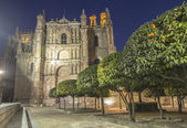 Old Cathedral of Plasencia — Stock Photo