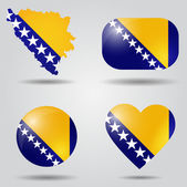 Bosnia and Herzegovina flag set — Stock Vector