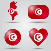 Tunisia flag set — Stock Vector