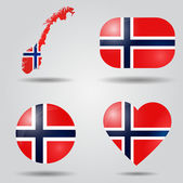 Norway flag set — Stock Vector