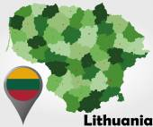 Lithuania political map — Vettoriale Stock