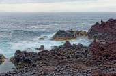 Rocky coast with moss in Azores — Стоковое фото