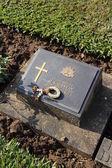 Kanchanaburi War Cemetery — Stock Photo
