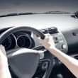 Car driver — Stock Photo #53819241
