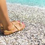Beautiful female feet on sea sand  — Stock Photo #54685485
