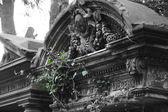 Old abandoned Jewish cemetery — Stock Photo
