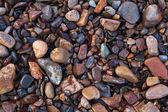 Texture of wet shiny small sea stones — Stock Photo