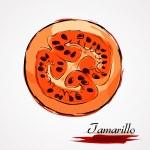 Tamarillo slice — Stock Vector #65473645