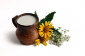 Milk in brown ceramic bowl, summer flowers on a white background — Stockfoto