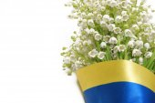 Bouquet of lily of the valley covered by the Ukrainian flag. — Stock fotografie