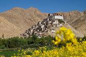 Chemrey monastery against deep blue sky in Ladakh — Стоковое фото
