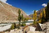 Beautiful mountain and river near Phandar Valley , Northern Paki — Stock Photo
