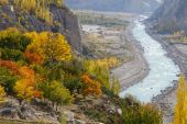 Beautiful trees and river in Northern Pakistan — Stock Photo