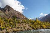 Beautiful autumn in Northern Pakistan — Stock Photo