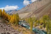 Beautiful Phandar river in Northern  Pakistan — Stock Photo