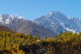Beautiful mountain at Phander Lake, Ghizer , Northern Pakistan — Stock Photo