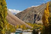 Beautiful view near Phandar Valley ,Northern Pakistan — Stock Photo