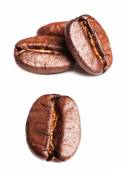 Collection of Roasted Coffee Beans — Stock Photo