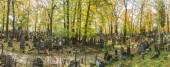 Panoramic view of the cemetery — Stock Photo