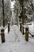 Snowy bridge — Stock Photo