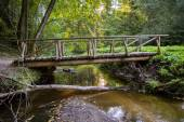 Bridge of logs — Foto de Stock
