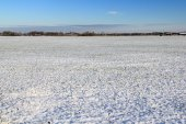 Snow melt and rural fields — Stock Photo