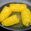 Corn boiling in pot — Stock Photo #74861197